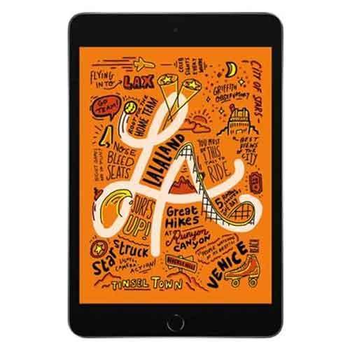 Apple iPad Mini WIFI 64GB MUQW2HNA price in chennai