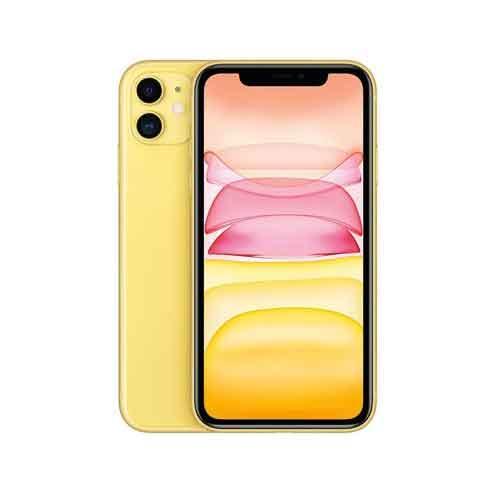 Apple iPhone 11 256GB MHDT3HNA price in chennai
